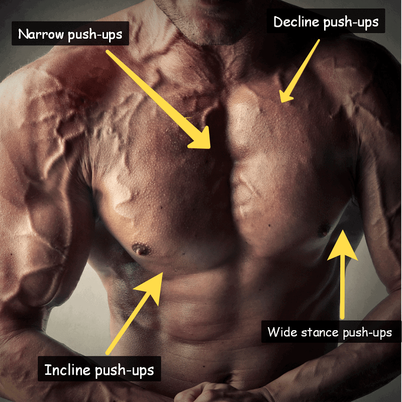 How many chest exercises should you do at home?